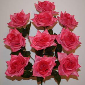 Роза острая 10-ка БО-111