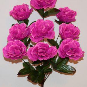 Роза камелия открытая 9-ка СР-271