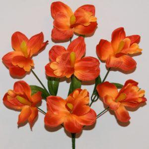 Ирис-орхидея 7-ка МА-49
