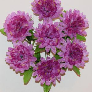 Хризантема-гвоздика 7-ка СР-362