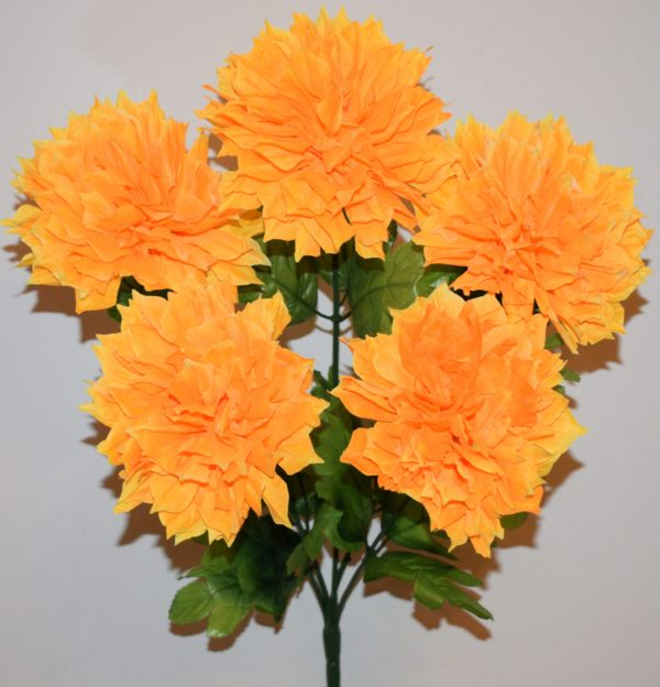 Астра хризантема 5-ка СР-247