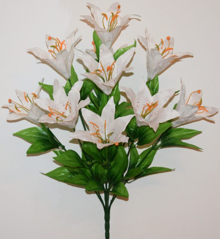 Лилия цветная 10-ка не прес БО-220