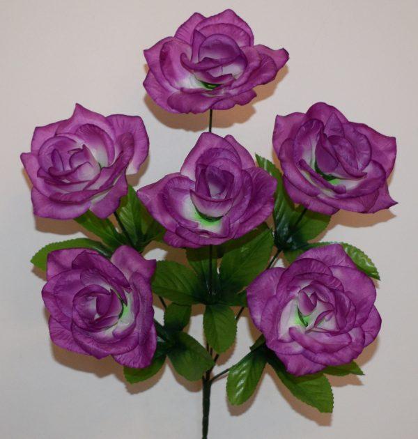 Роза острая 6-ка СР-353