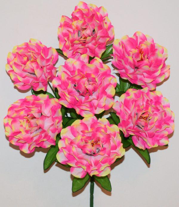 Хризантема радуга 7-ка СР-367